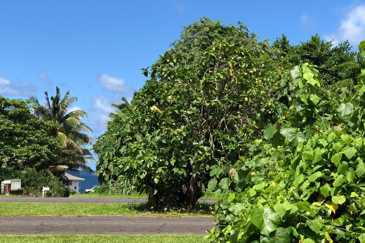 ハワイアンパークス土地 ※オーシャン・ビュー区画不動産画像2