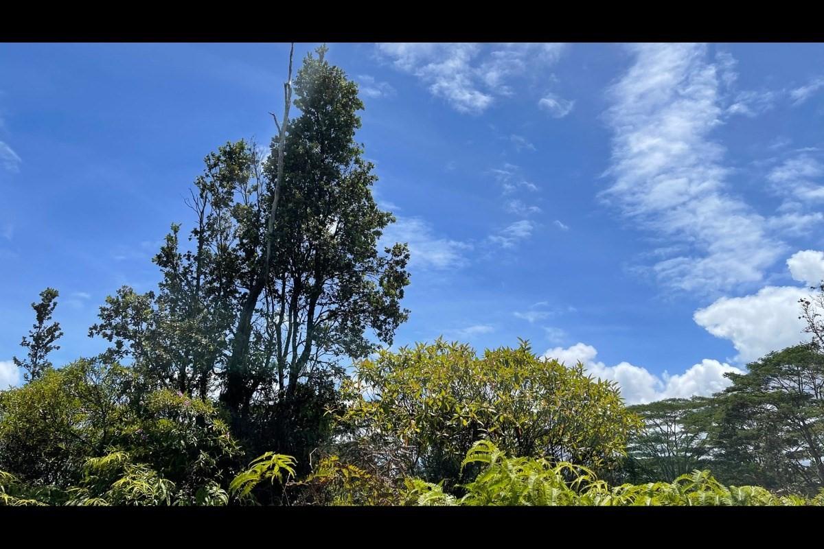 ハワイアンパラダイスパーク土地不動産画像13